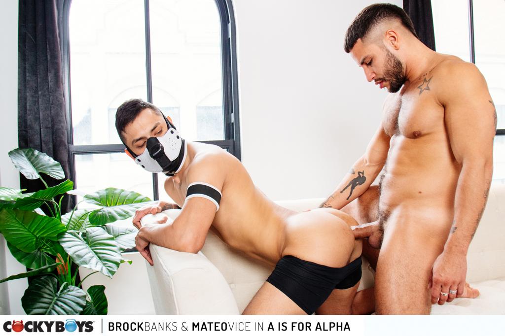 Brock Banks & Mateo Vice